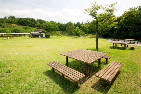 芝生公園風景